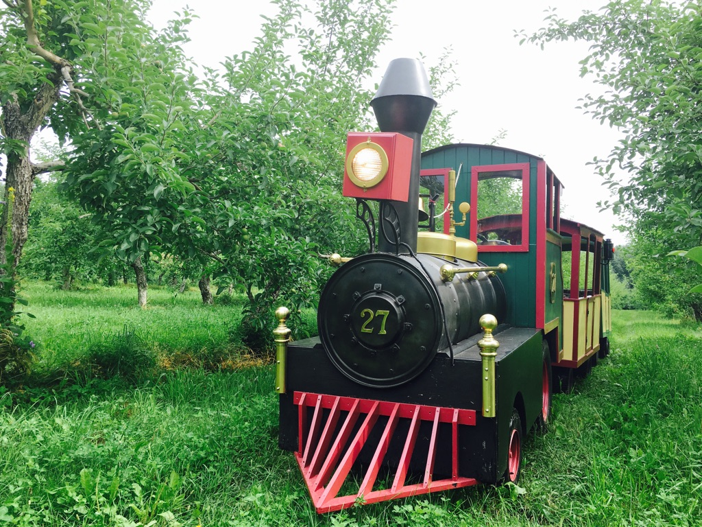 Petit train du Nord