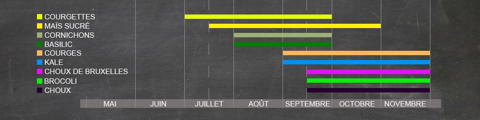 chart_culture_noir