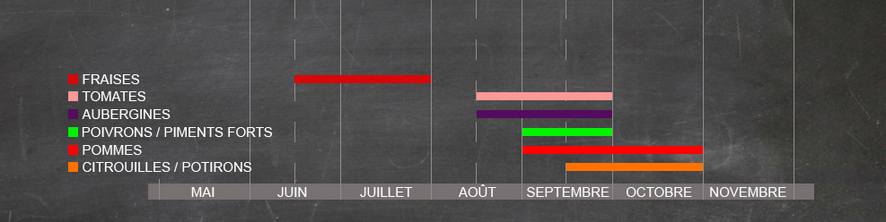 chart_cueillette_noir